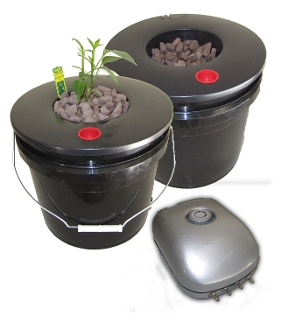 Deep Water Culture DWC Hydroponic System two bucket 3.5 gallon