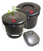 Black Widow Grow Bucket DWC Dual 3.5 Gal. System Bundle