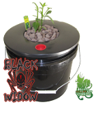 Black Widow Hydroponics DWC Grow Bucket