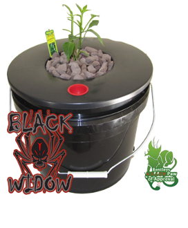 Deep Water Culture DWC Hydroponic System one bucket five gallon